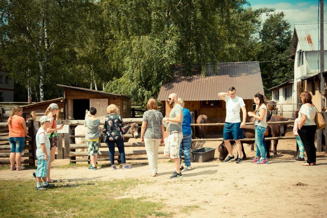 https://pcpr.powiat.rzeszowski.pl/aktualnosci/swieto-rodzin-zastepczych-dzien-rodzicielstwa-zastepczego/attachment/13-jpg/
